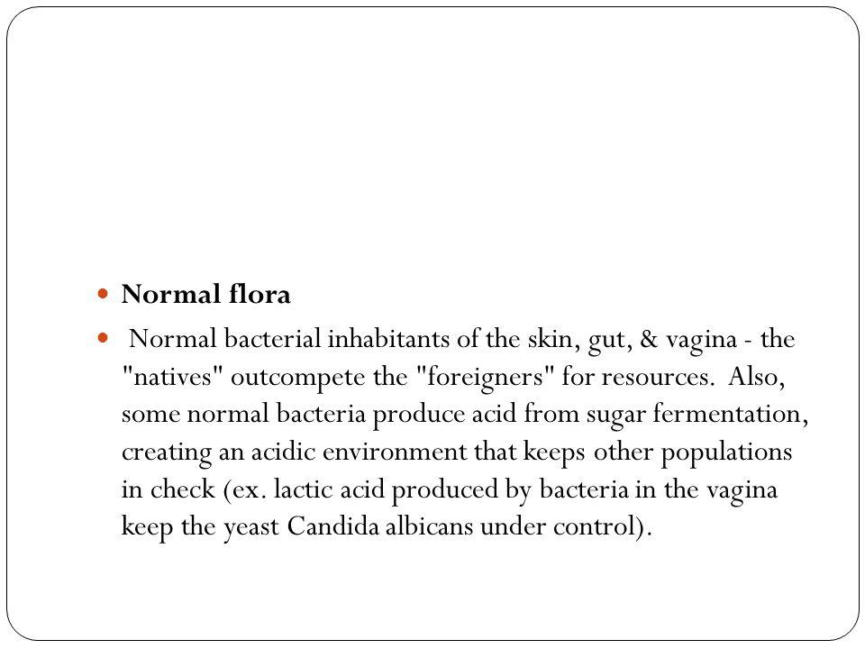 Normal flora