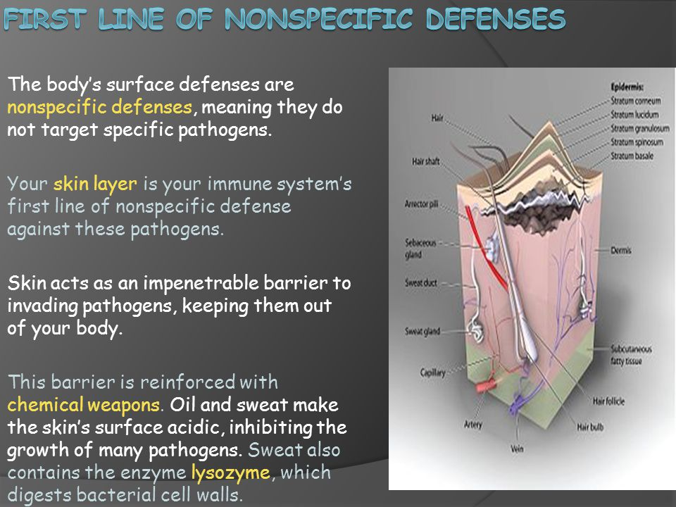 First Line of Nonspecific defenses
