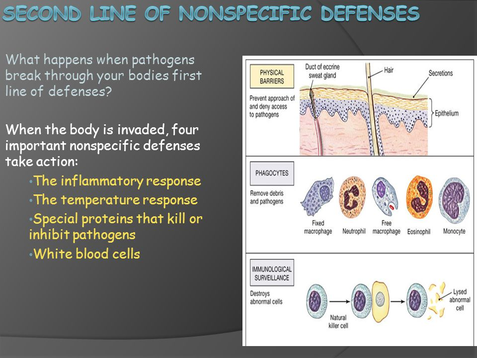 Second Line of Nonspecific defenses