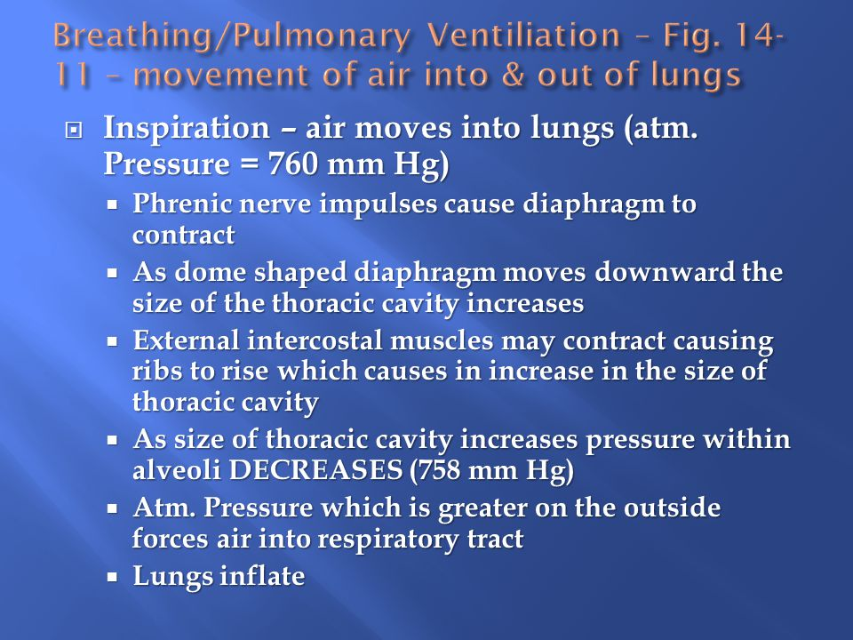 Inspiration – air moves into lungs (atm. Pressure = 760 mm Hg)