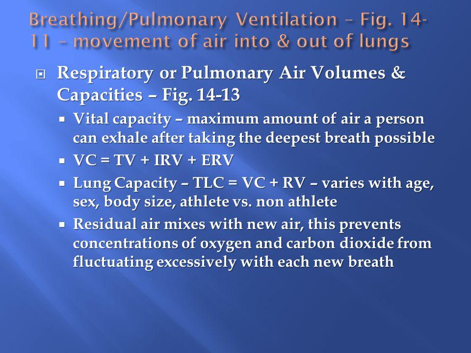 Respiratory or Pulmonary Air Volumes & Capacities – Fig. 14-13