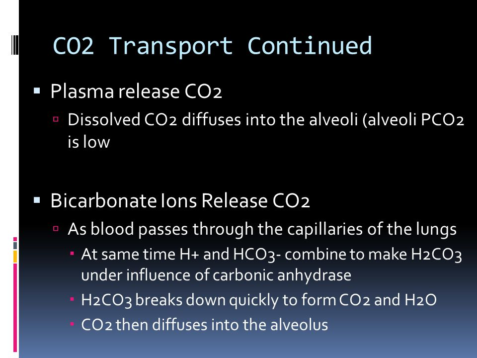 CO2 Transport Continued