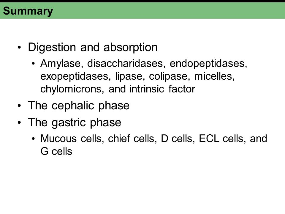Digestion and absorption