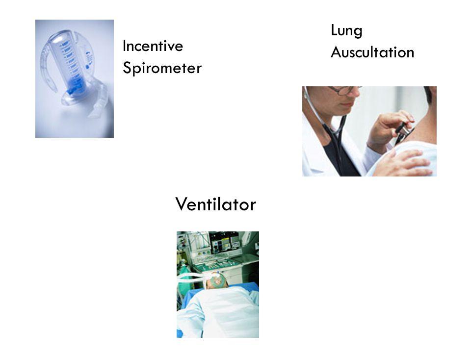 Lung Auscultation Incentive Spirometer Ventilator