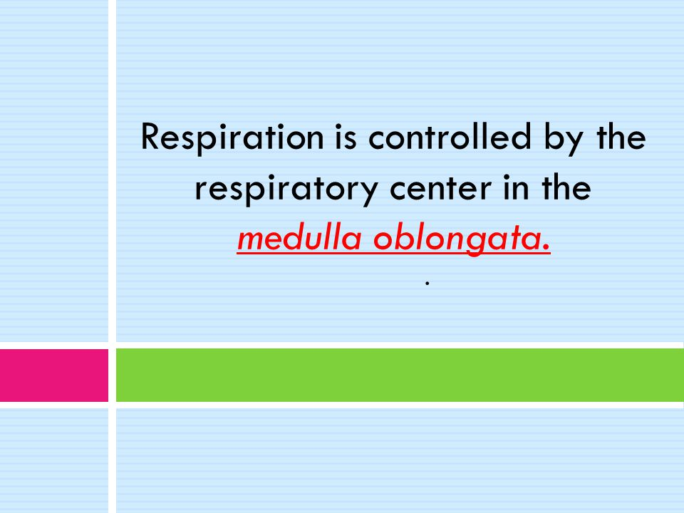 Respiration is controlled by the respiratory center in the medulla oblongata. .