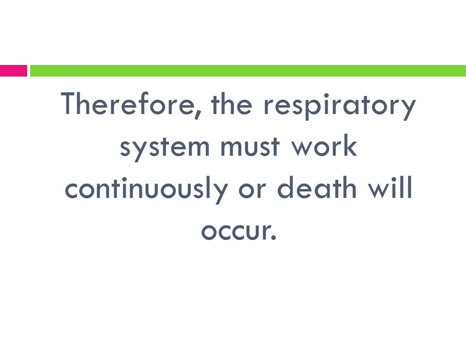 Therefore, the respiratory system must work continuously or death will occur.