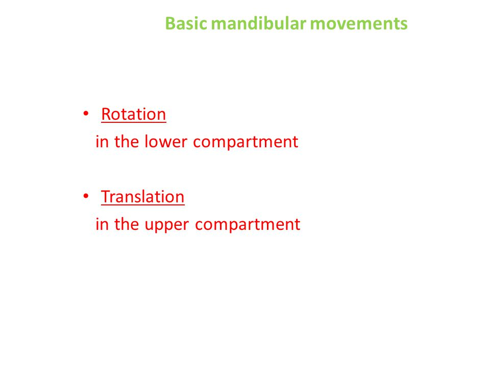 Basic mandibular movements