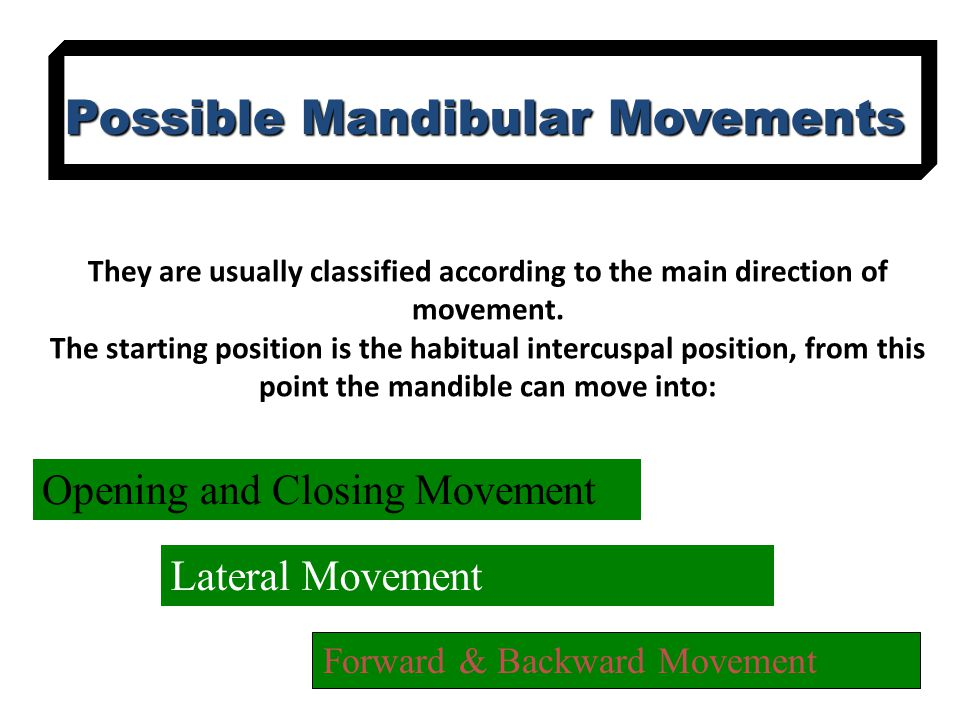 Possible Mandibular Movements