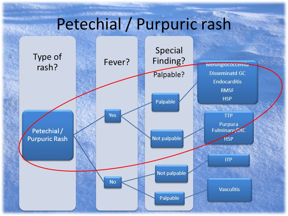 Petechial / Purpuric rash