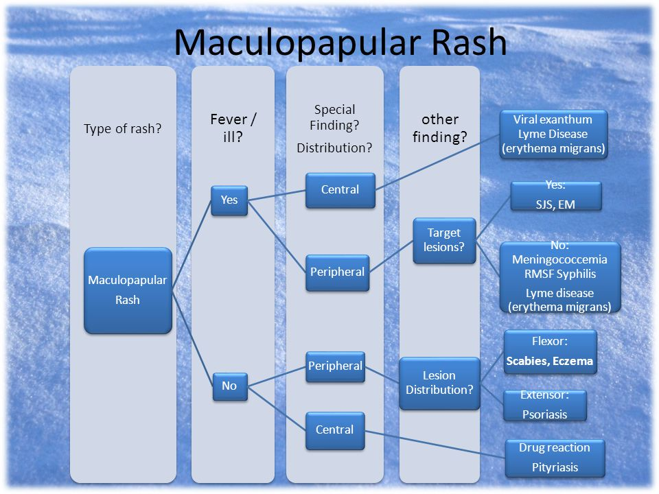 Maculopapular Rash Fever / ill other finding Special Finding