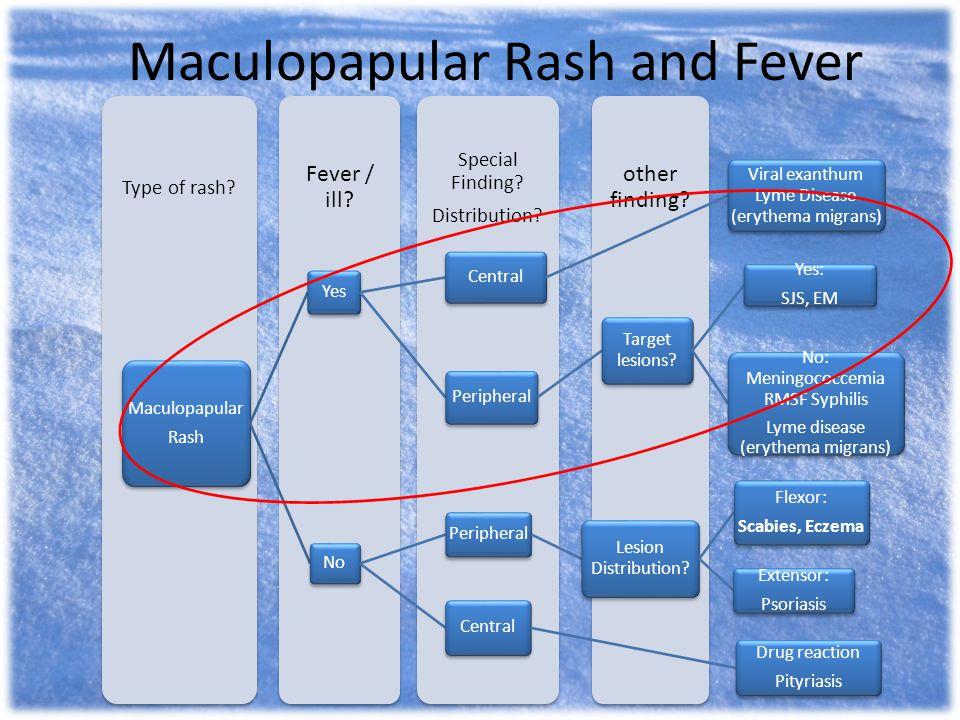 Maculopapular Rash and Fever