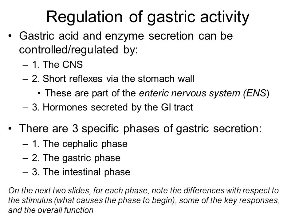 Regulation of gastric activity