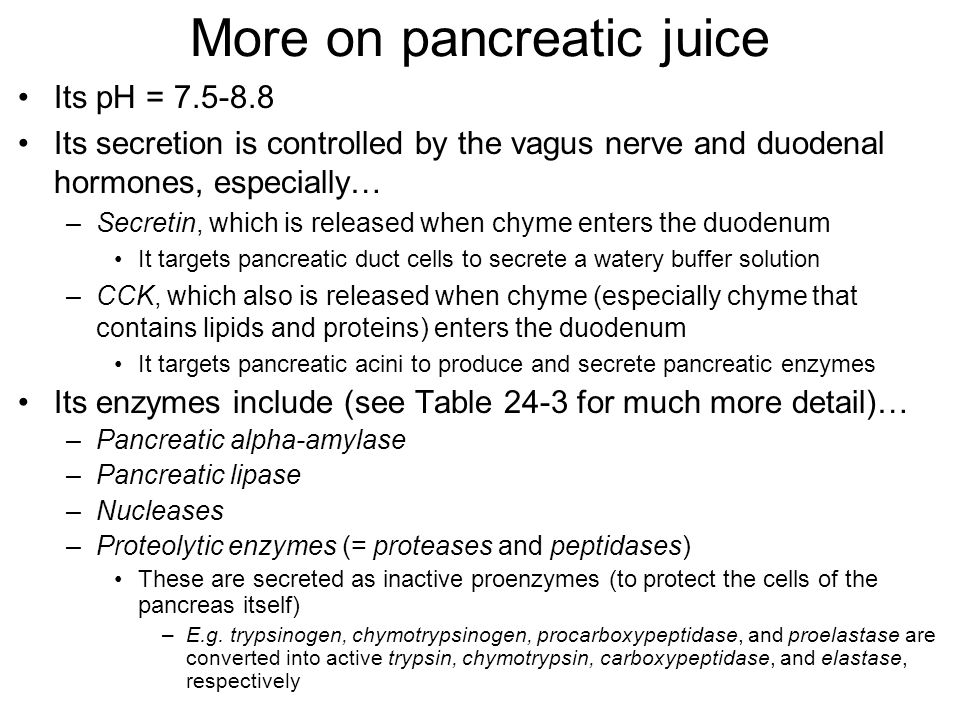 More on pancreatic juice