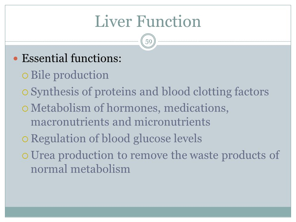 Liver Function Essential functions: Bile production