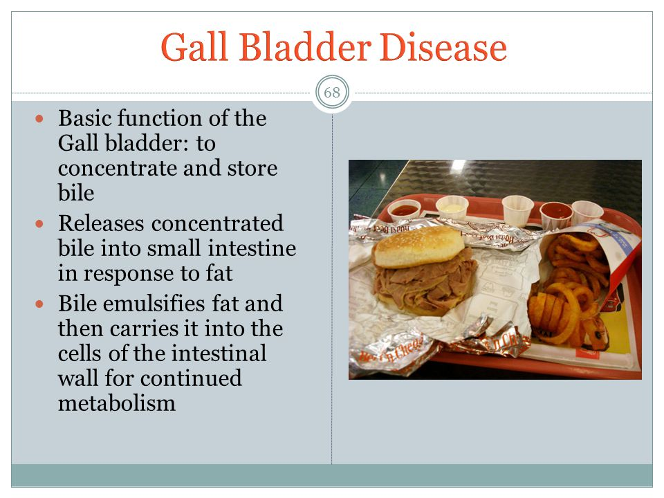 Gall Bladder Disease Basic function of the Gall bladder: to concentrate and store bile.