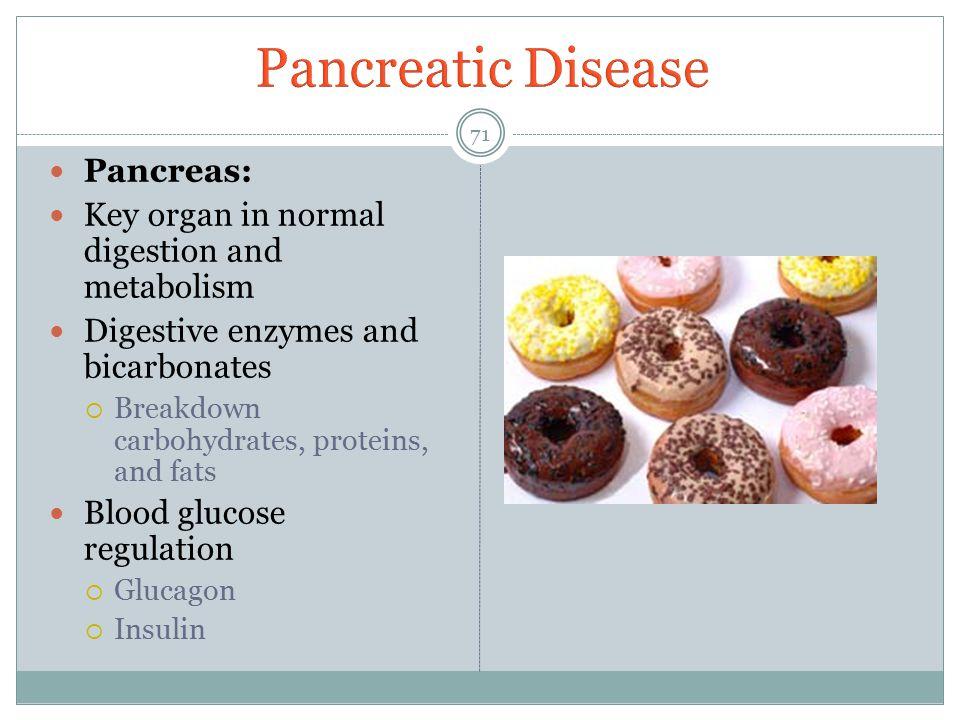 Pancreatic Disease Pancreas: