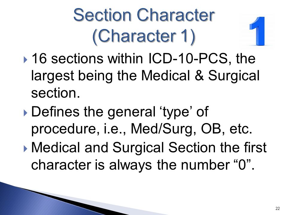 Section Character (Character 1)