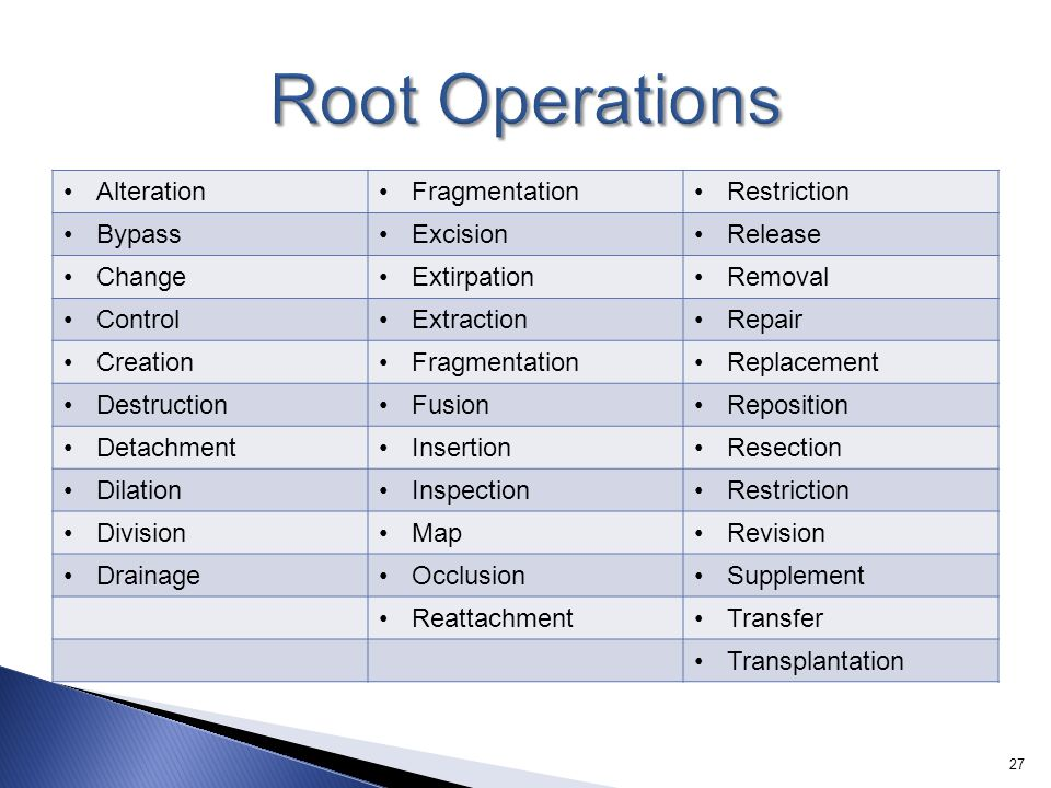 Root Operations Alteration Fragmentation Restriction Bypass Excision