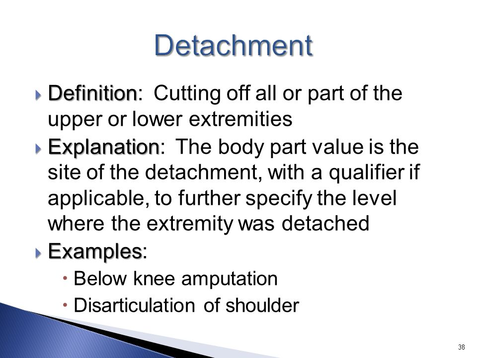 Detachment Definition: Cutting off all or part of the upper or lower extremities.