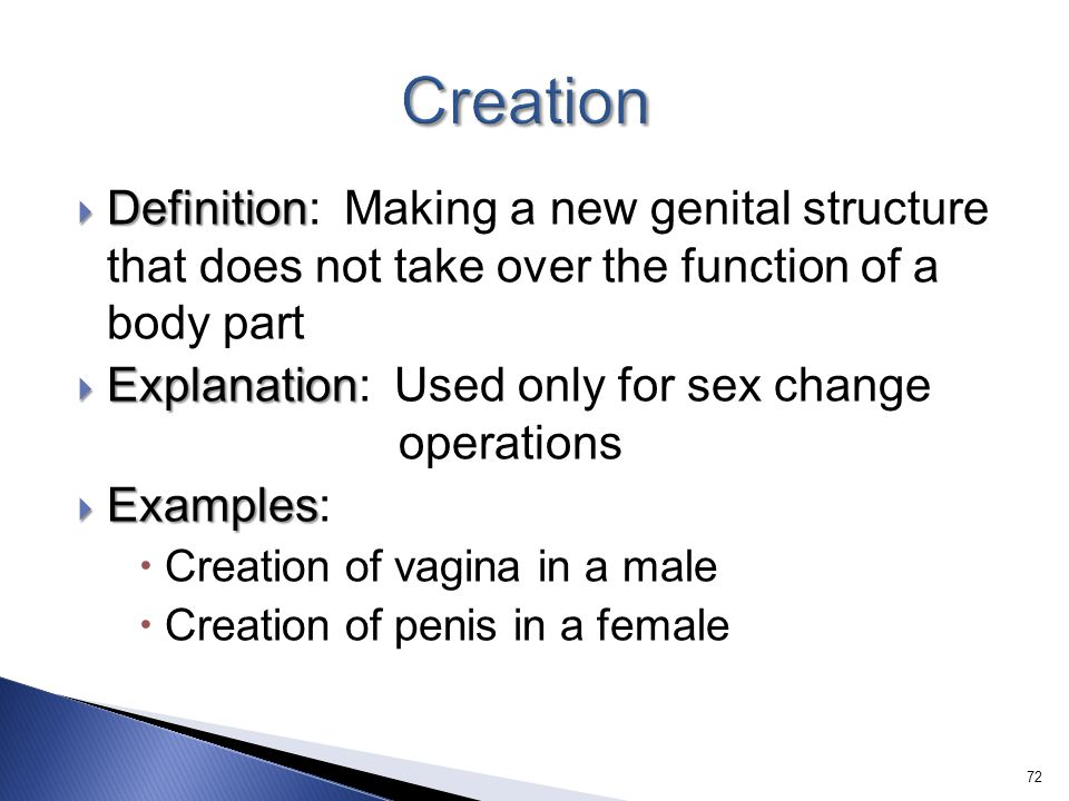 Creation Definition: Making a new genital structure that does not take over the function of a body part.