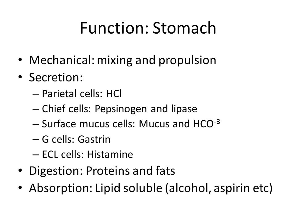 Function: Stomach Mechanical: mixing and propulsion Secretion: