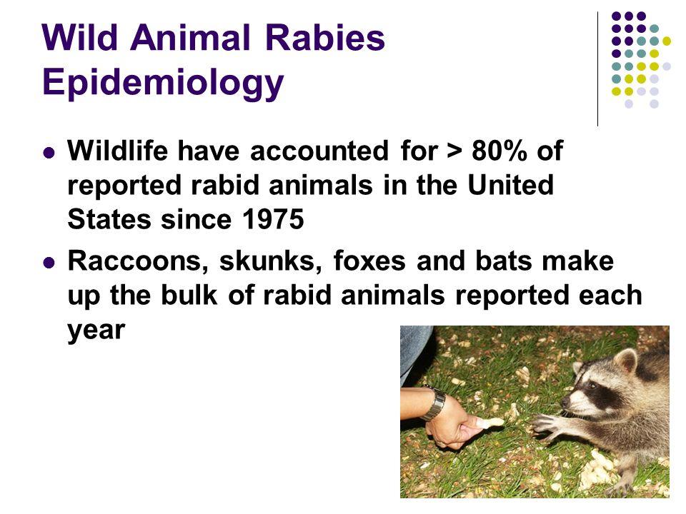 Wild Animal Rabies Epidemiology