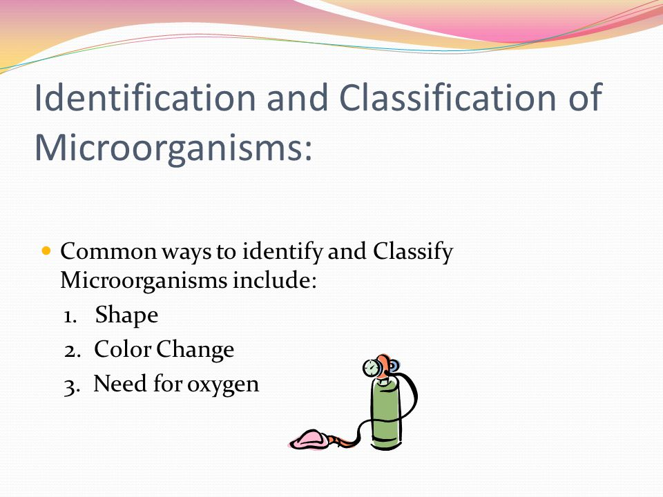 Identification and Classification of Microorganisms: