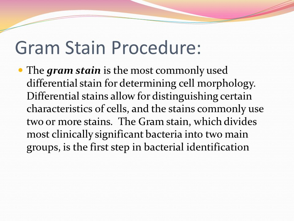 Gram Stain Procedure: