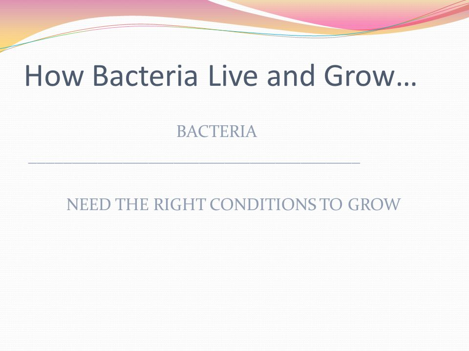 How Bacteria Live and Grow…