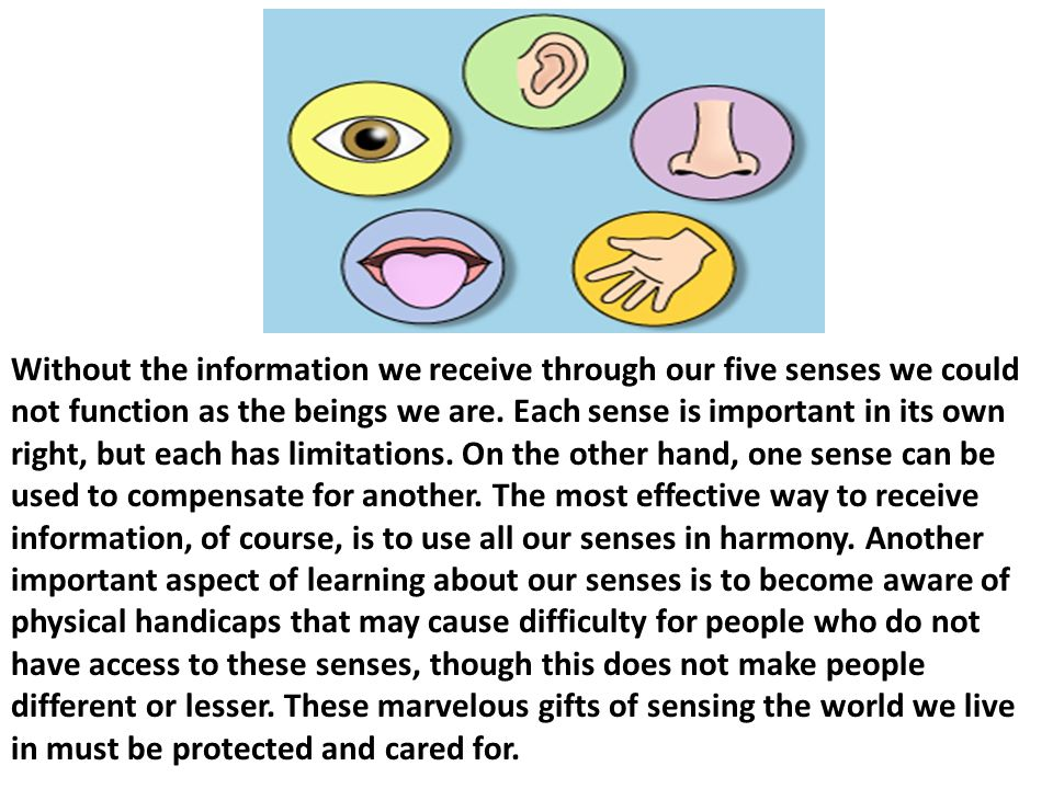 Without the information we receive through our five senses we could not function as the beings we are.