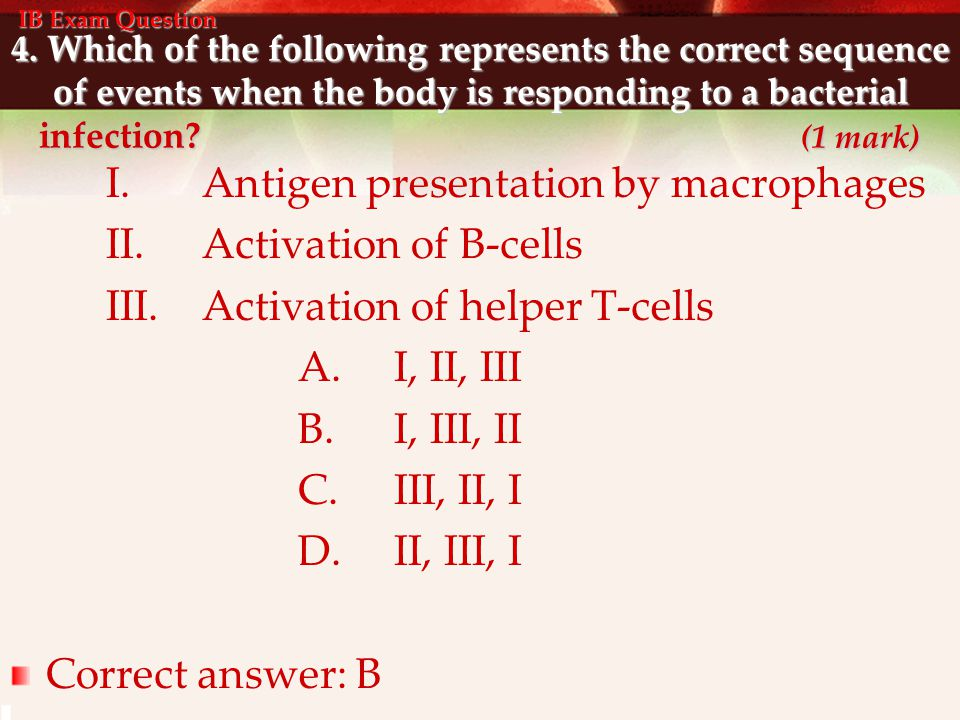 I. Antigen presentation by macrophages II. Activation of B-cells