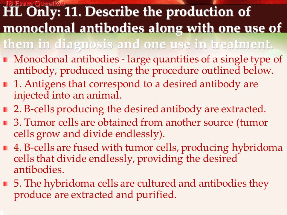 IB Exam Question HL Only: 11. Describe the production of monoclonal antibodies along with one use of them in diagnosis and one use in treatment.