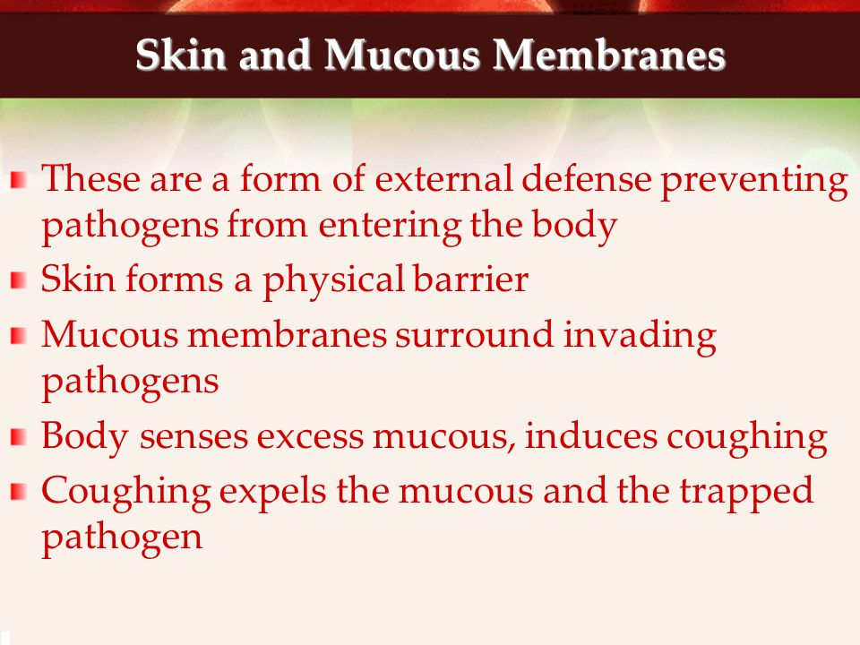 Skin and Mucous Membranes