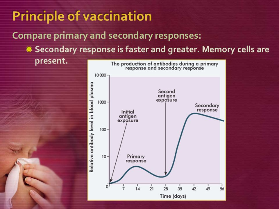 Principle of vaccination