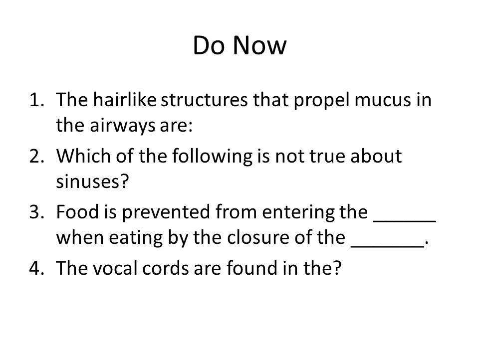 Do Now The hairlike structures that propel mucus in the airways are:
