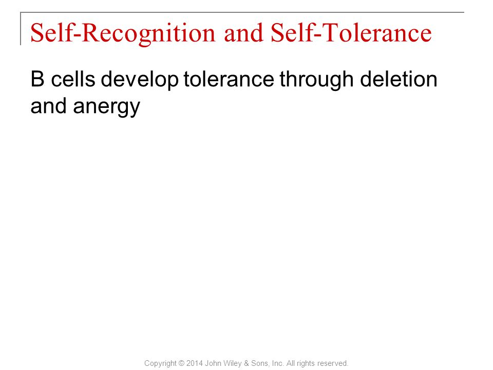 Self-Recognition and Self-Tolerance