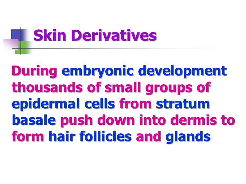 Skin Derivatives