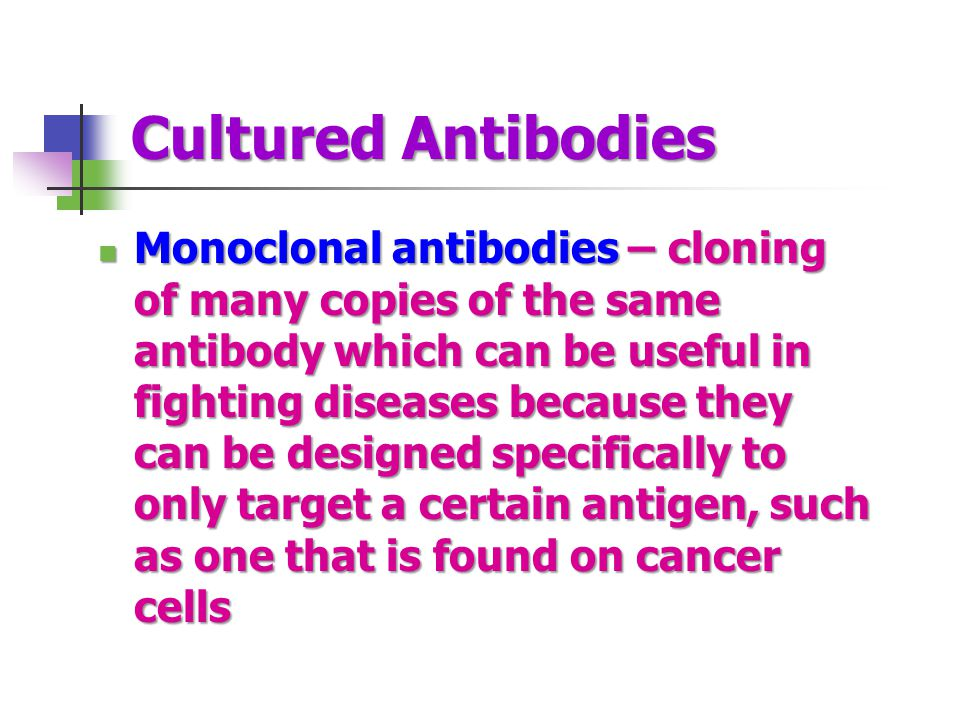 Cultured Antibodies