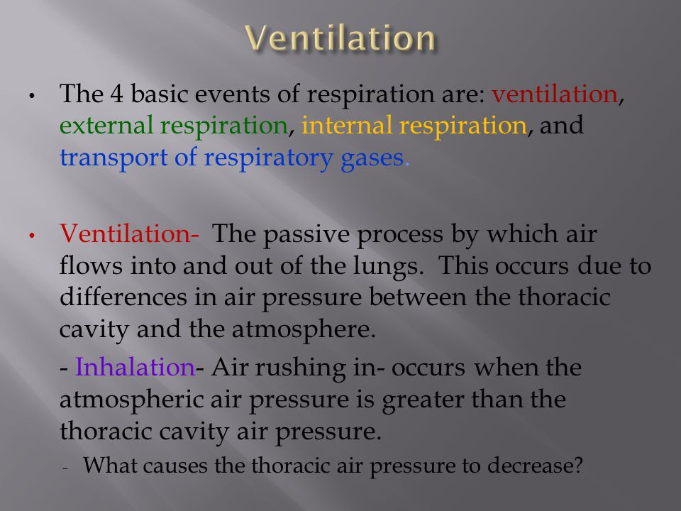 Ventilation The 4 basic events of respiration are: ventilation, external respiration, internal respiration, and transport of respiratory gases.