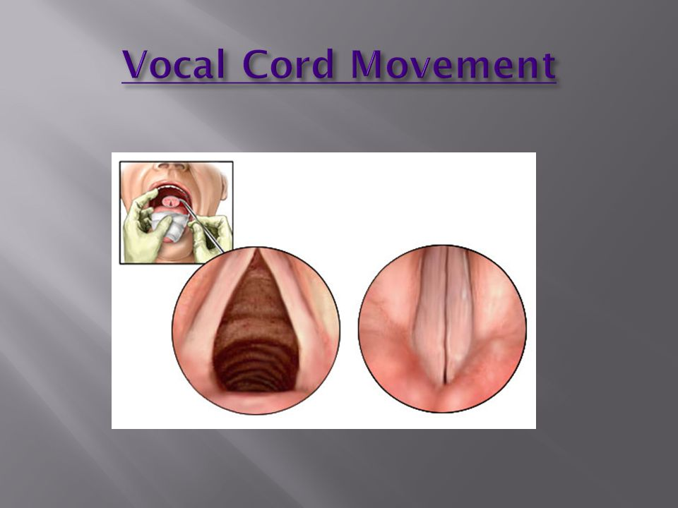 Vocal Cord Movement