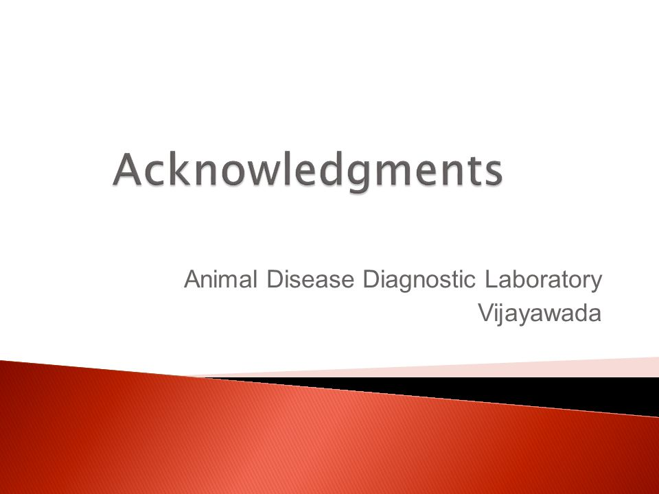 Animal Disease Diagnostic Laboratory Vijayawada