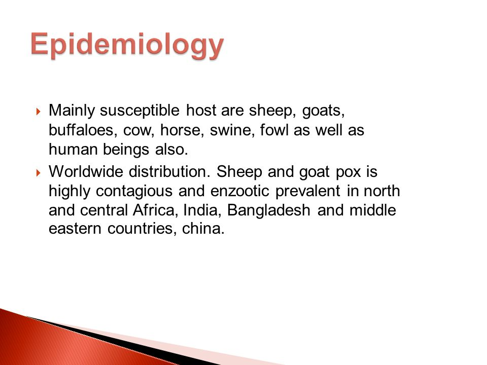 Epidemiology Mainly susceptible host are sheep, goats, buffaloes, cow, horse, swine, fowl as well as human beings also.
