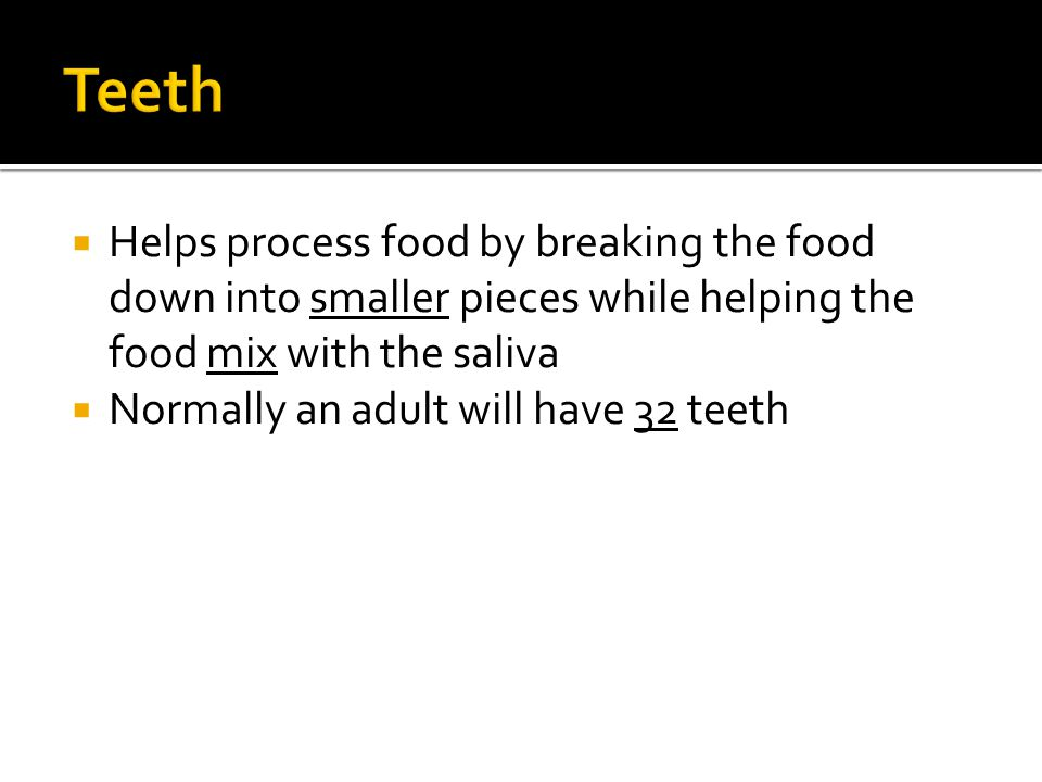 Teeth Helps process food by breaking the food down into smaller pieces while helping the food mix with the saliva.