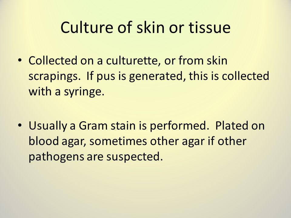 Culture of skin or tissue