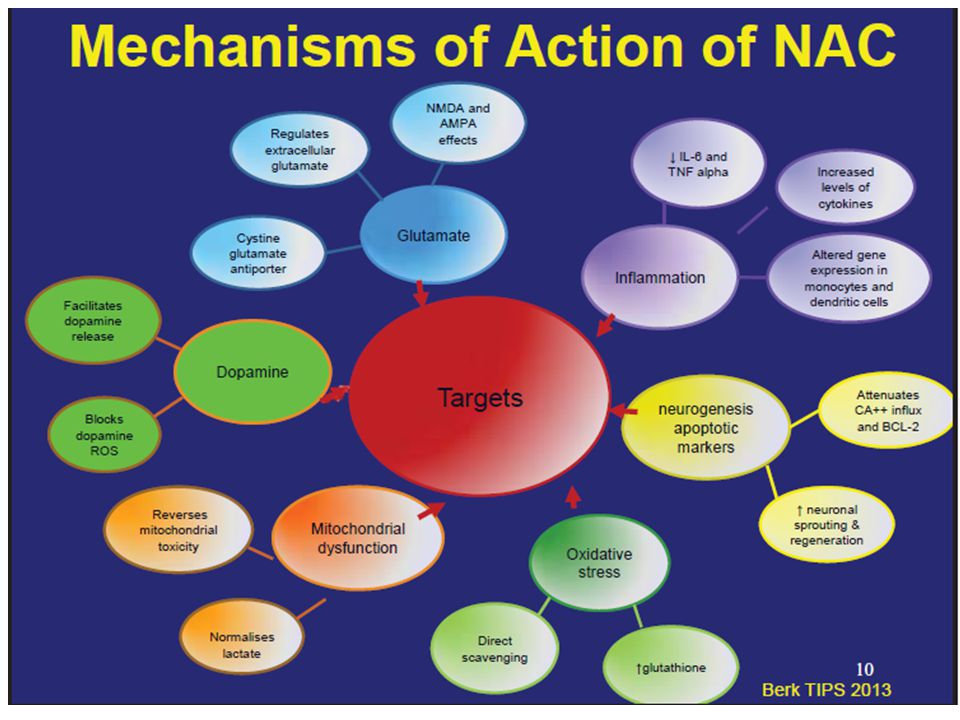 NAC- Mechanisms of action