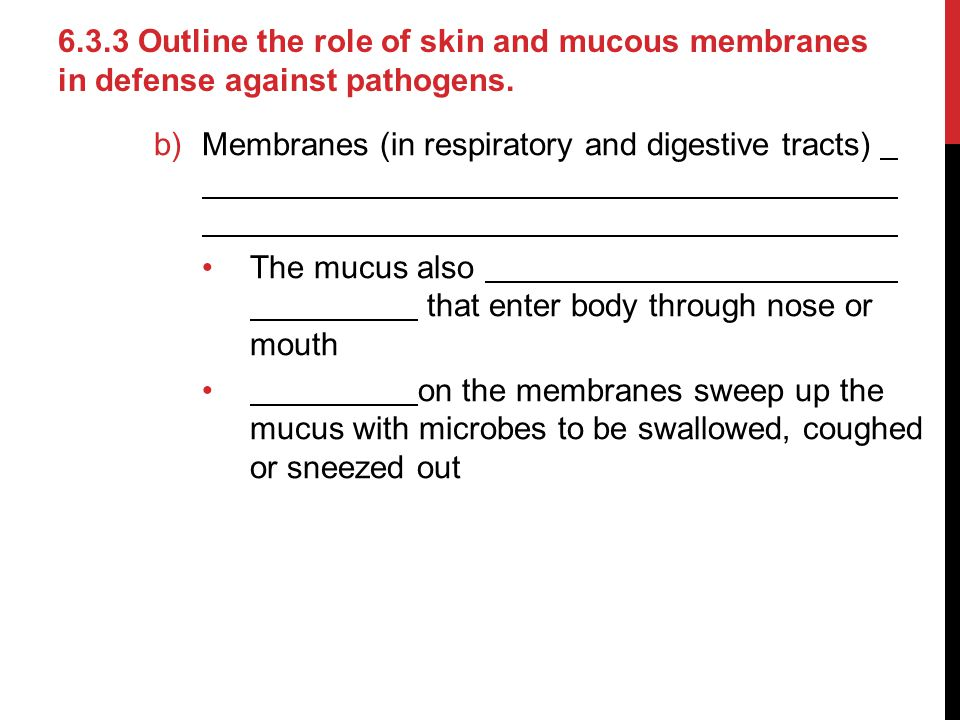 6.3.3 Outline the role of skin and mucous membranes in defense against pathogens.