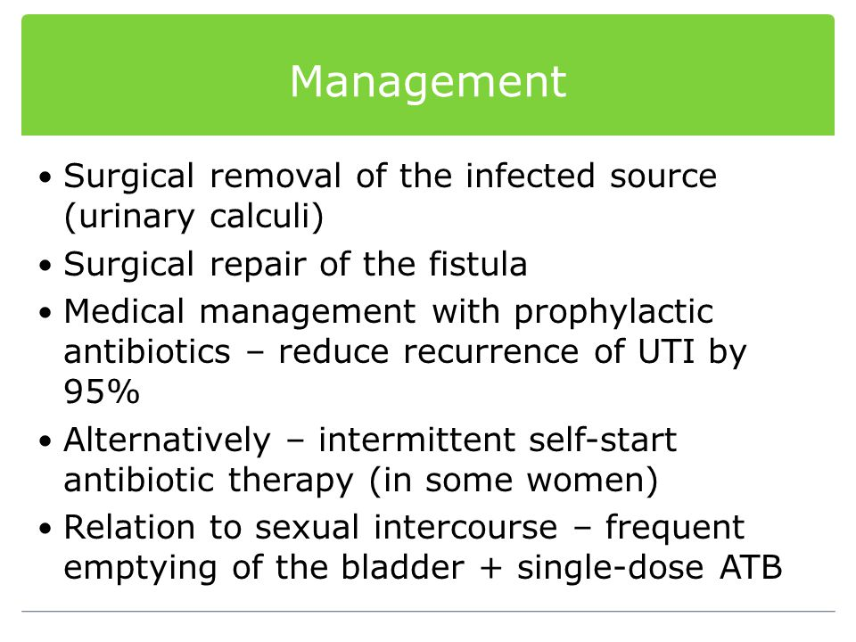 Management Surgical removal of the infected source (urinary calculi)