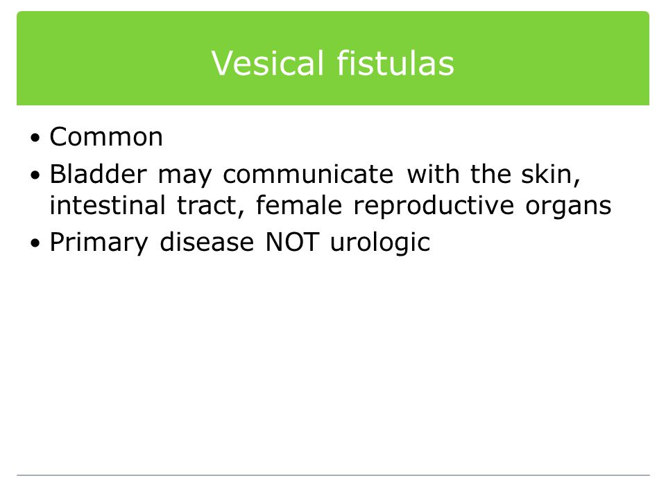 Vesical fistulas Common