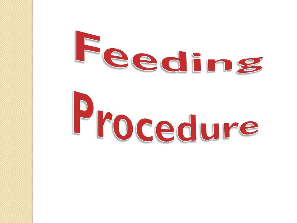 Feeding Procedure