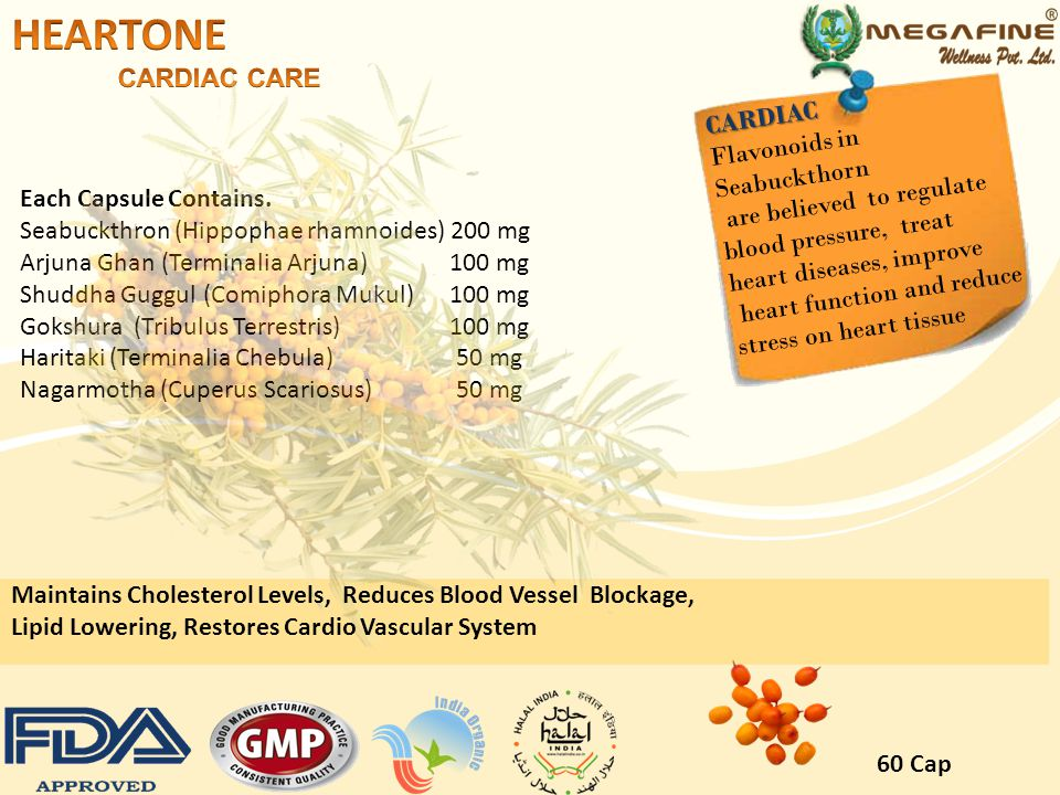 HEARTONE CARDIAC CARE CARDIAC Flavonoids in Seabuckthorn